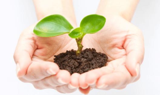 エコ、環境、リサイクル