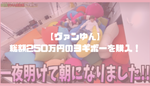 【総額250万円】ヴァンゆんチャンネルが大量のヨギボーを購入!