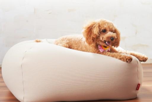 ハナロロの犬用ビーズクッション